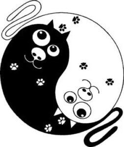 Le Tai Chi n'est pas - Mouvements Animaux