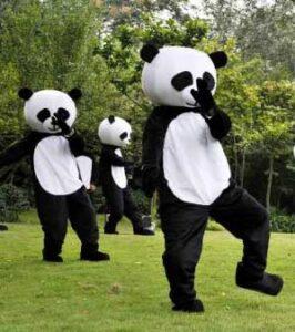 Ce que le Tai Chi n'est pas - Panda fait du Taichi