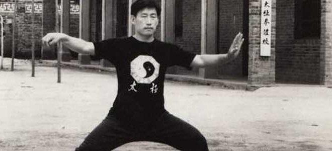Vidéos de Tai Chi Chuan - Taichi Lyon