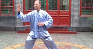 Tai Chi style Chen Xiaojia Videos Collection - Taichi Lyon