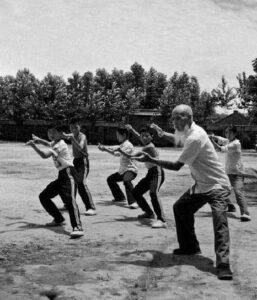 Art Martial Interne Chinois Tai Chi Lyon Vieux Maitre Chinois Chenjiagou Enfants