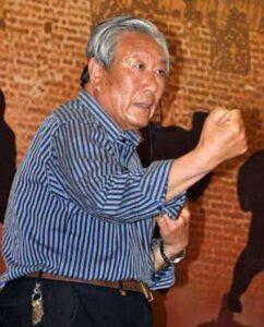Taijiquan style Chen Xiaojia Chen Boxiang