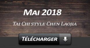 Telecharger Video Tai Chi Style Chen Laojia Mai 2018 Lyon