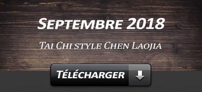 Telecharger Video Tai Chi Style Chen Laojia Septembre 2018 Lyon
