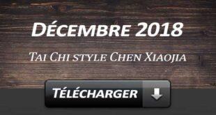 Telecharger Video Tai Chi Style Chen Xiaojia Décembre 2018 Lyon