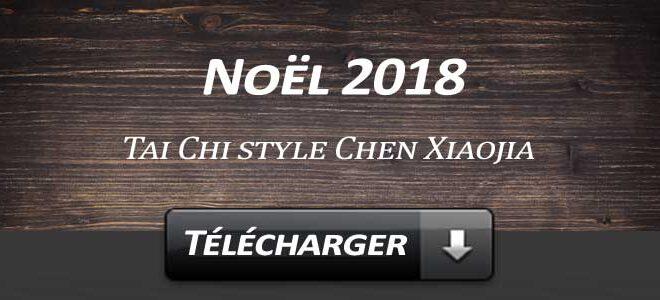 Telecharger Video Tai Chi Style Chen Xiaojia Noel 2018 Lyon