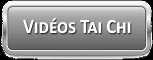 Video Tai Chi Lyon Taijiquan style Chen