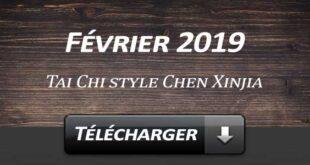Telecharger Video Tai Chi Style Chen Xinjia Février 2019 Lyon