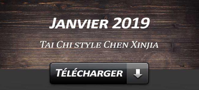 Telecharger Video Tai Chi Style Chen Xinjia Janvier 2019 Lyon