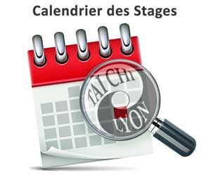 Tai Chi Lyon Stages Calendrier style Chen Taijiquan