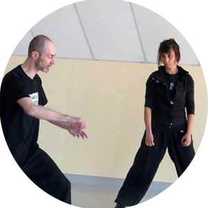 Tai-Chi Lyon cours Particuliers Taijiquan Chen Style