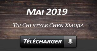 Telecharger Video Tai Chi Style Chen Xiaojia Mai 2019 Lyon