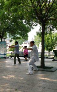 tai-chi-chuan style chen parc chenjiagou wang chang jiang