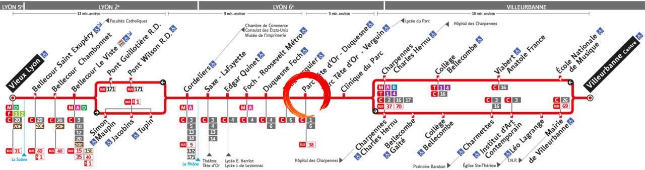 Tai-Chi Parc Tete Or Lyon 6 TCL Ligne 27