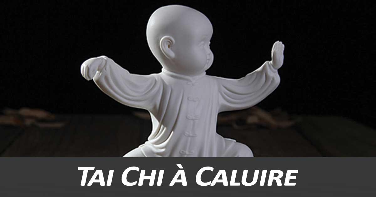 Tai-Chi-Caluire-Taijiquan-style-Chen-Montessuy