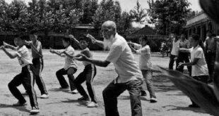 Taiji-Quan-style-Chen-Gongfu-Jia-Kungfu