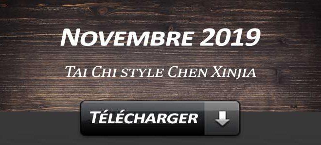 Telecharger-Video-Tai-Chi-Style-Chen-Xinjia-Novembre-2019-Lyon