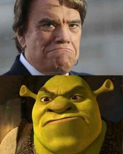 Violence-Visage-Carre-Shrek-Tapie