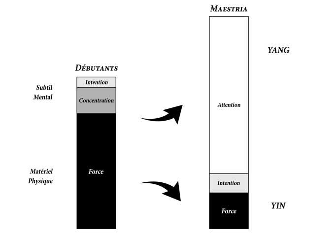 Tai-Chi-Intention-Concentration-Attention-Force-Yong-Yi-Bu-Yong-Li