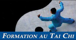 Formation-Tai-Chi-Chen-Lyon-Week-End-Taichi-Taiji-Quan-1200