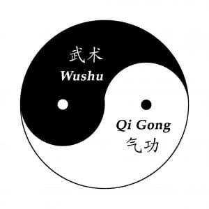 Diagramme Tai Chi Yin Yang Taijitu Qigong Wushu Kungfu pinyin