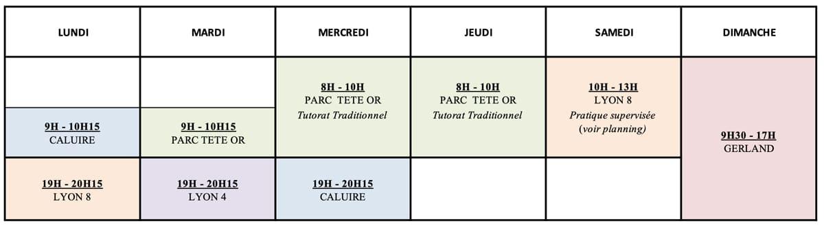 cours-tai-chi-lyon-chen-debutants-lyon8-croix-rousse-gerland-planning